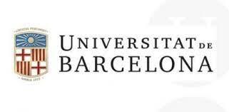 Gestación Subrogada en el Estado español: una  investigación teórico-empírica desde una perspectiva no androcentrista (2017)